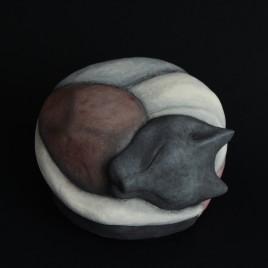 NAOS CROM gatto