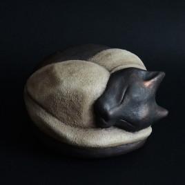 NAOS gatto